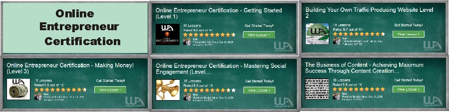 Online Entrepreneur Certification Lesson Modules