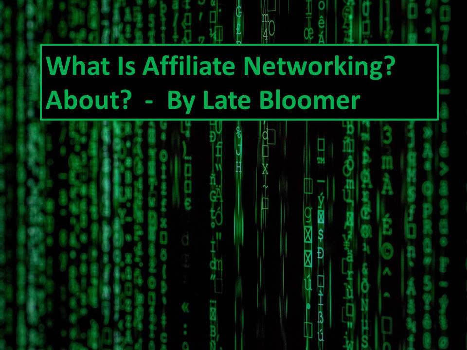 What Is Affiliate Networking About?