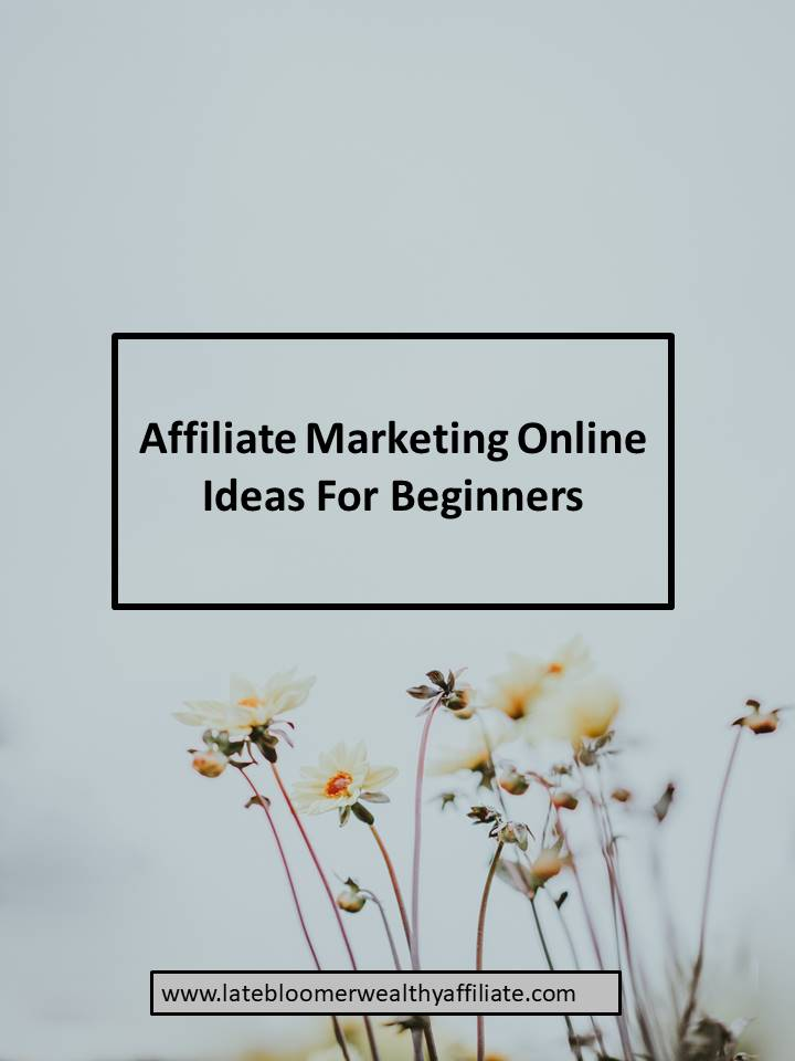 Affiliate Marketing Online Ideas For Beginners
