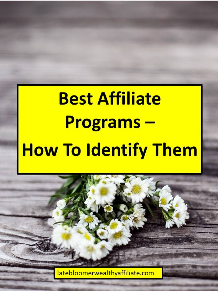 Best Affiliate Programs – How To Identify Them