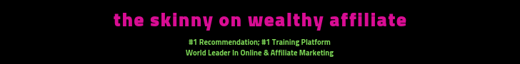 The Skinny On Wealthy Affiliate. #1 Recommendation; #1 Training Platform